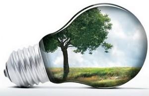 A importância do desenvolvimento sustentável