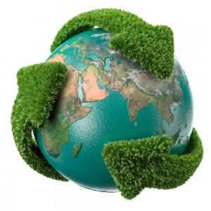 Dicas de projetos sustentáveis para empresas